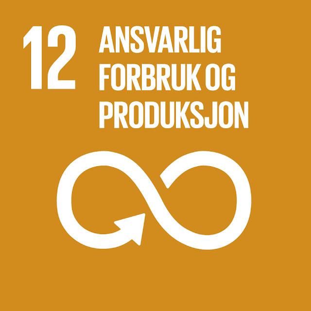 FNs bærekraftsmål 12: ansvarlig forbruk og produksjon