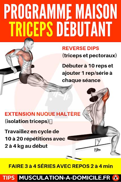 musculation à domicile programme musculation débutant poids du corps et haltère triceps avants-bras