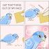 Bird Food Meme