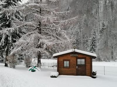 الثلوج في النمسا,