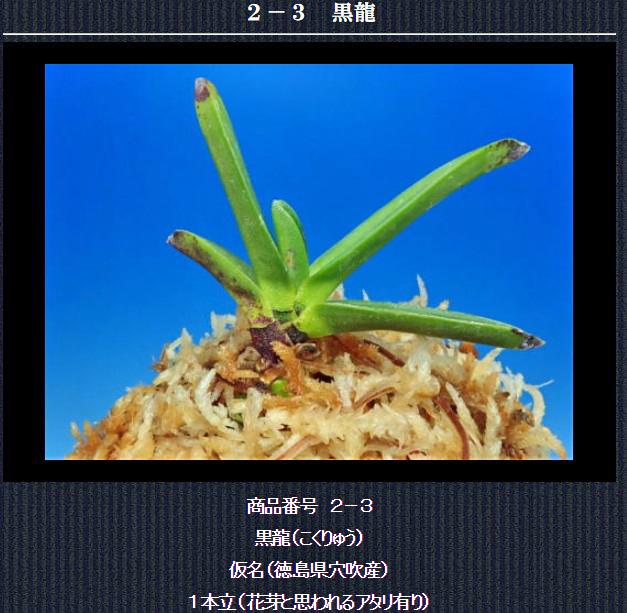 http://www.fuuran.jp/2-3.html