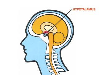 tumör på hypofysen symptom