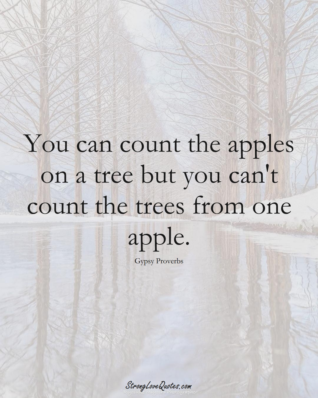 You can count the apples on a tree but you can't count the trees from one apple. (Gypsy Sayings);  #aVarietyofCulturesSayings