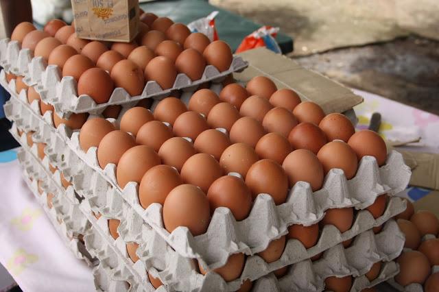 Cuatro millardos de huevos salieron del mercado desde llegada de Maduro