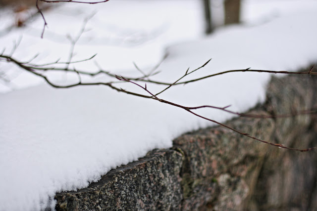 snow on a stone wall, branches