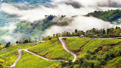 Best Cities To Visit In India, Darjeeling