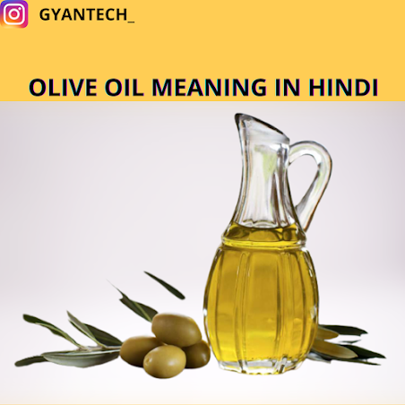 OLIVE OIL MEANING IN HINDI