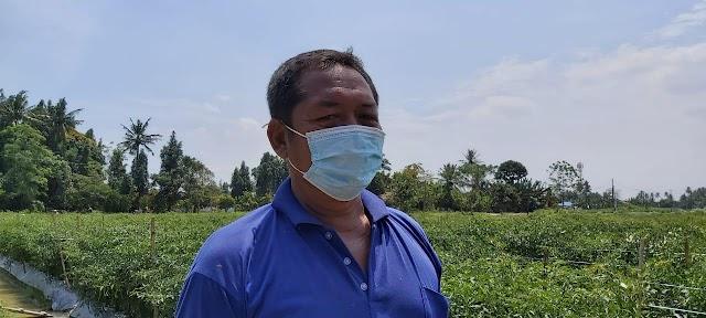 Keterbatasan Lahan, Jadi Inspirasi Parno Kembangkan  Pertanian IPABE