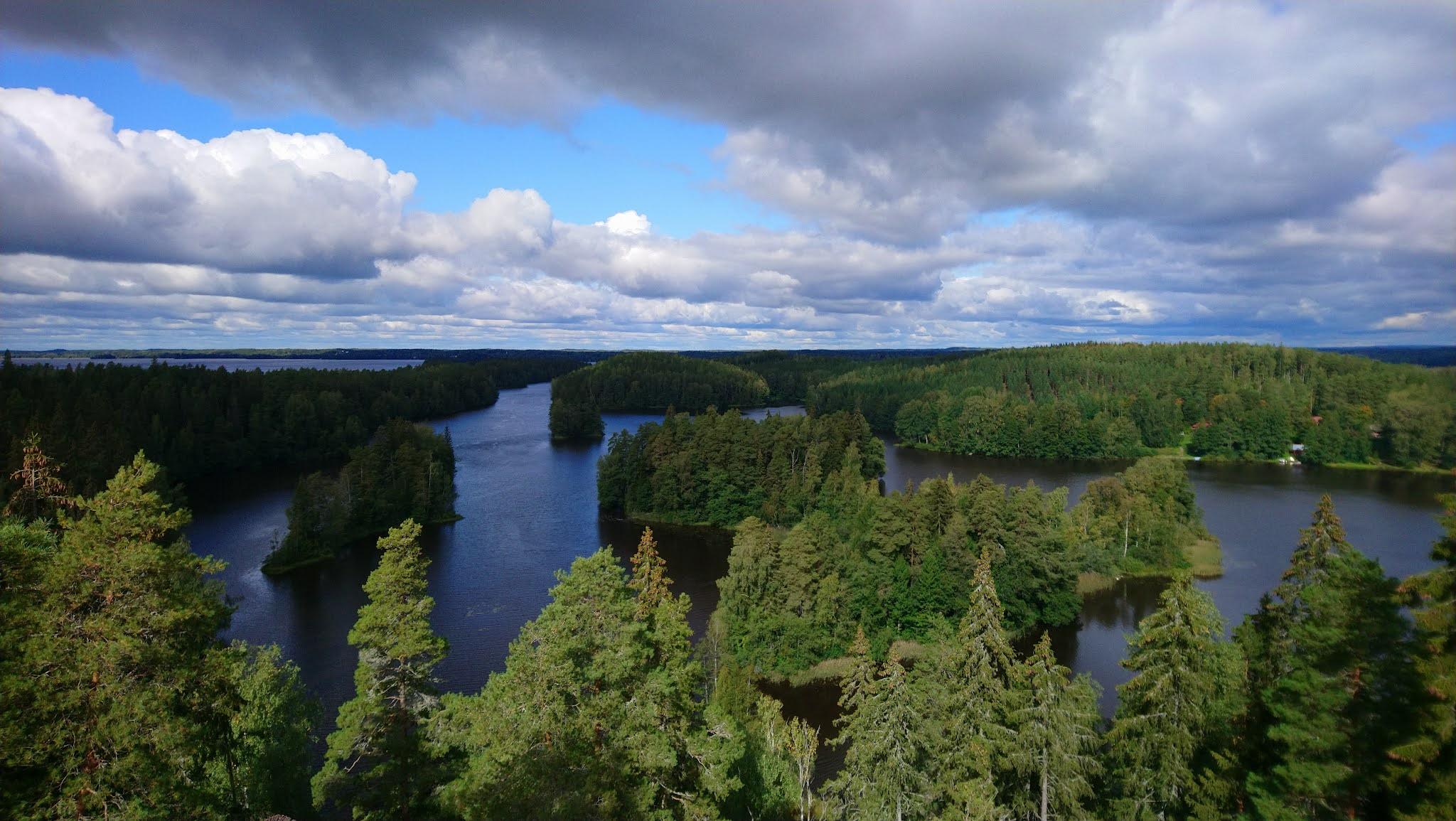 Maisema järvestä ja metsästä korkealta kuvattuna