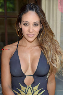 Melissa Gorga in Swimsuit 2017  26 ~ Celebs.in Exclusive