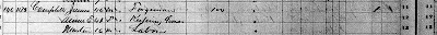 The 1870 census for James and family, the tick mark is in column 20 on the far right of the image.