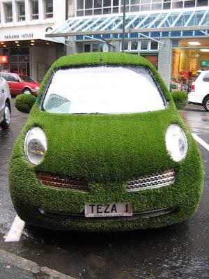 Auto, divertido y ridículo con cubierta de pasto