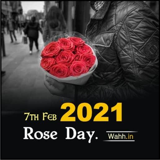 Rose Day  7 February 2021