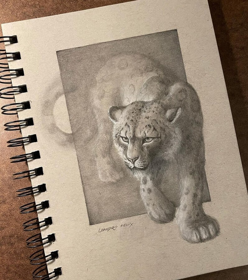 02-Cat-on-the-prowl-Leandro-Felix-www-designstack-co
