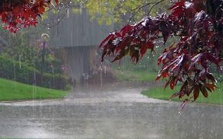 इंदौर में आज भी रिमझिम बारिश का दौर जारी