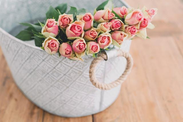 Les roses & moi !