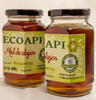 Miel sin glifosato eucalyptus ecoapi ecoapicultores