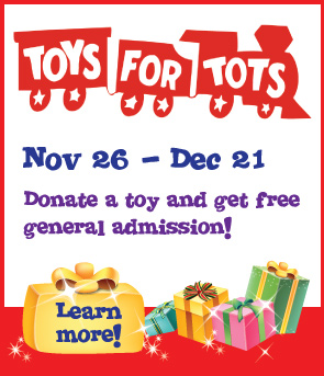 Orange County Mom Blog Discovery Science Center Toy Drive