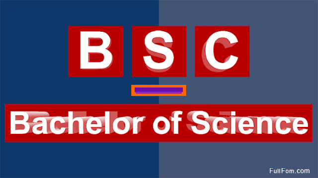 Bachelor of Science, BSc