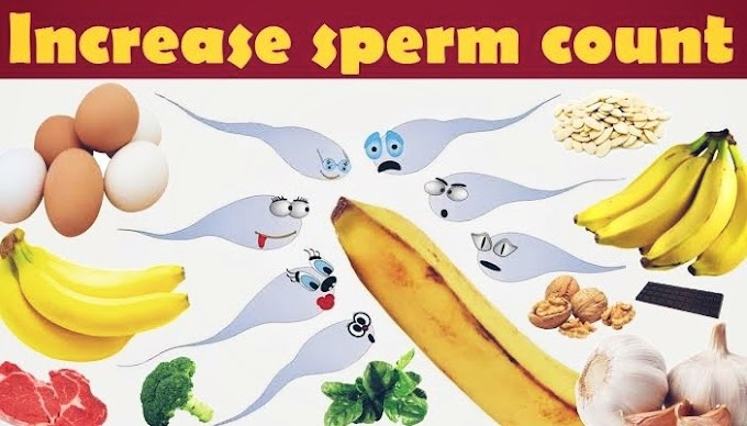 15 Foods for Strong Sperm: Count, Motility, Volume, and Morep