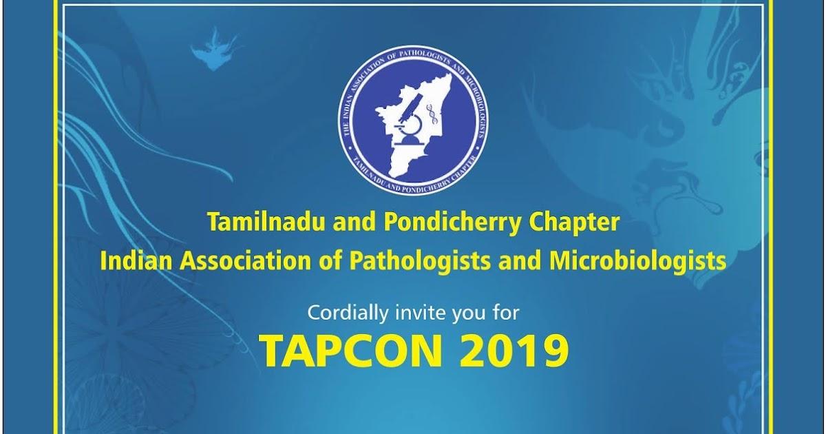 Iapm Conference 2019