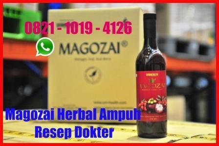 Obat Herbal Diabetes Tipe 2 Magozai