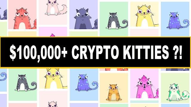 بعد العملات الالكترونية تعرف على القطط الرقمية