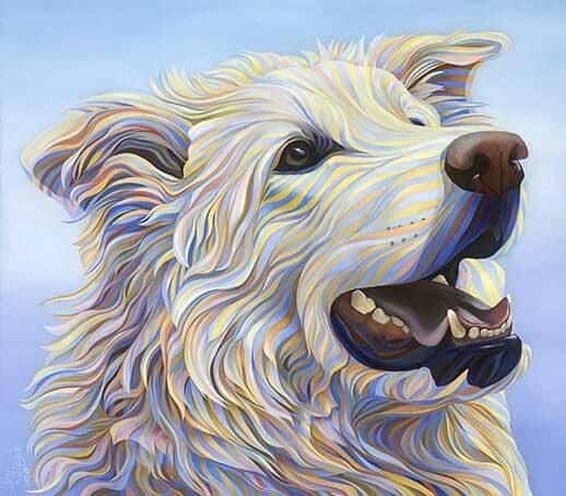 13-White-Shepherd-Kate-Hoyer-www-designstack-co