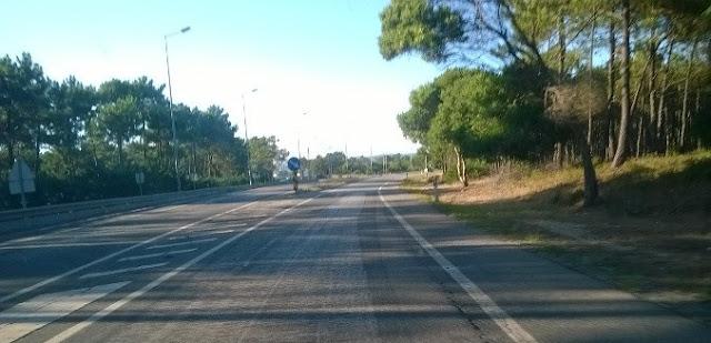 Estrada Nacional 109 ( Ic1)