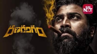 Don Returns (Ranarangam) 2021 Hindi Telugu Full Movie Dual Audio 480p