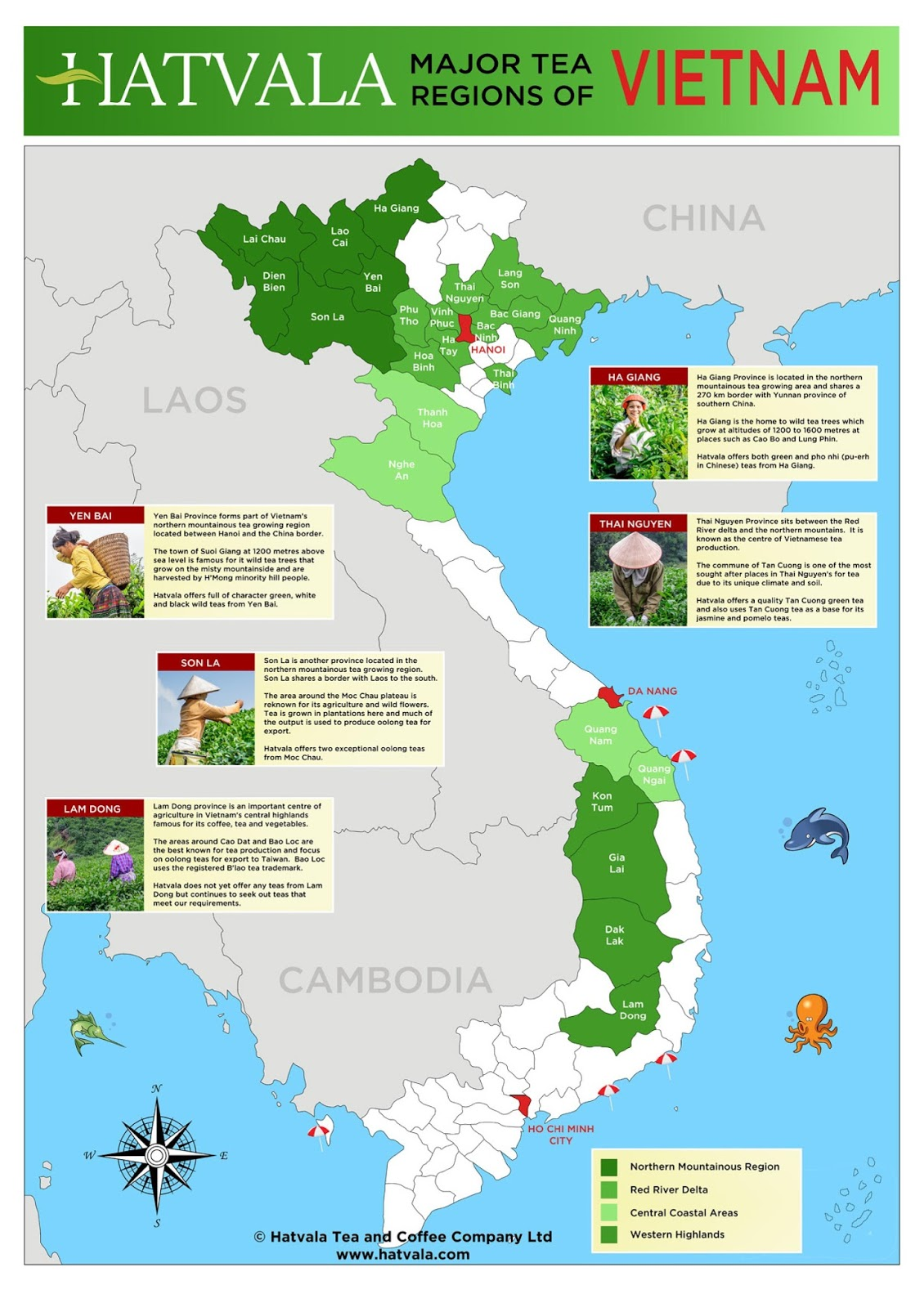 Tea In The Ancient World Advice To Beginners About Tea - Map of teas