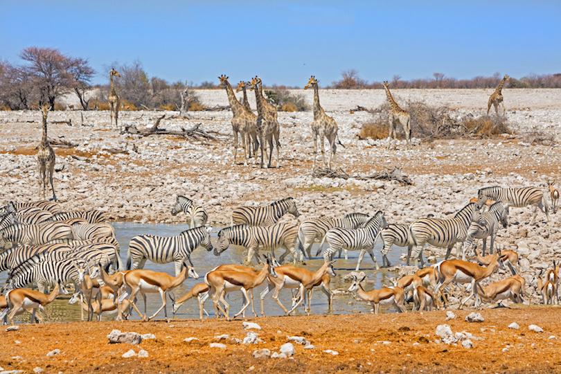 اجمل الاماكن للزيارة في ناميبيا