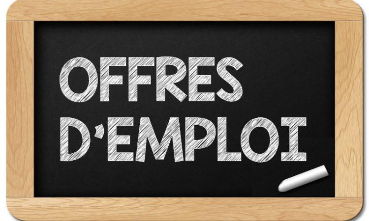 Offres d'emplois:Technicien(ne) agro-industries /élève Ingénieur