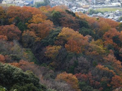 獅子窟寺境内からの眺望 紅葉