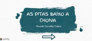 https://view.genial.ly/5eb810b62fb48d0d930bb838/presentation-as-pitas-baixo-a-choiva