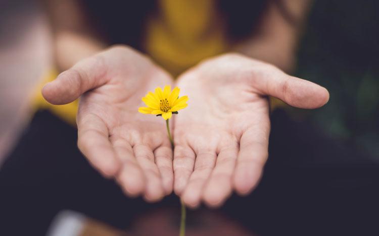 nhiều tiền hơn có thể giúp bạn được yêu thương, quan tâm và ân cần hơn.
