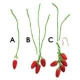 Red-hot Earrings - Step 1