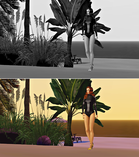 FIERCE by SACHA FIERCE: FIERCE BY SACHA FIERCE FOR TS3; FIERCE BY SACHAFIERCE READY-TO-WEAR