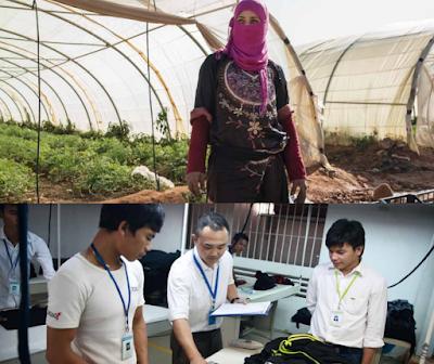 Mejorar la Seguridad y la Salud de los Trabajadores Jóvenes - Nota Informtiva