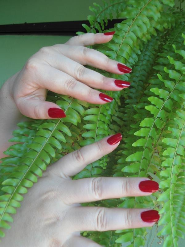 Unhas longas e bonitas pintadas com esmalte vermelho.