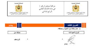 فروض المستوى الرابع في اللغة العربية والرياضيات والنشاط العلمي بحلة رائعة  المرحلة الأولى اكتوبر 2019