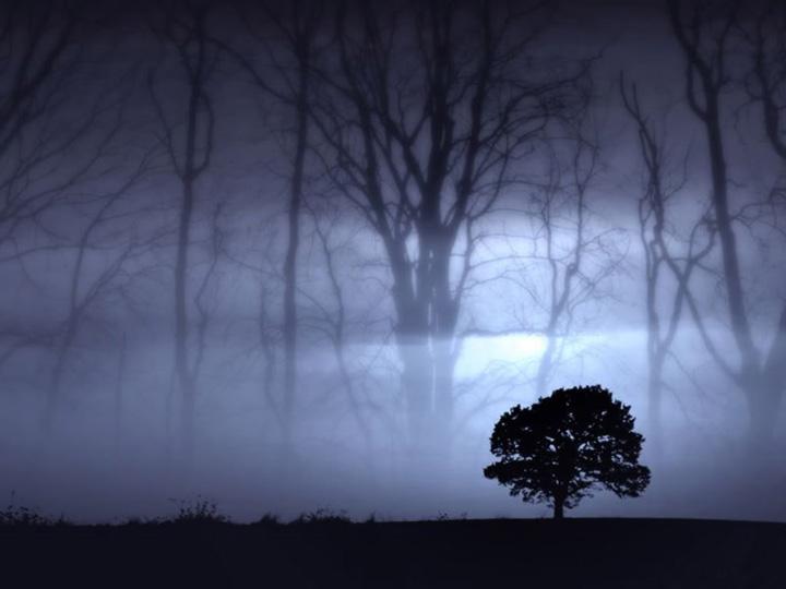sisli resimler