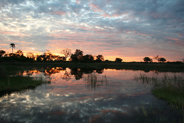 Okavango Delta,Botswana