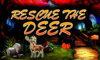 Play Top10NewGames - Top10 Rescue The Deer