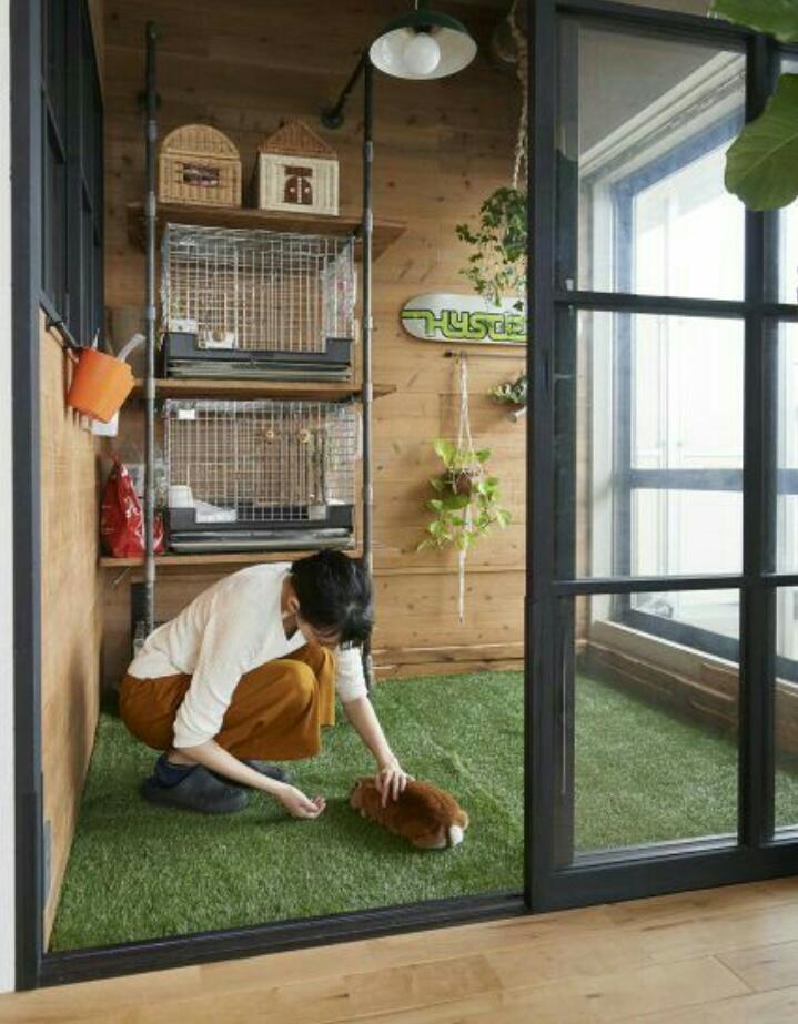 Tips membuat kandang kucing yang nyaman - Benu craft
