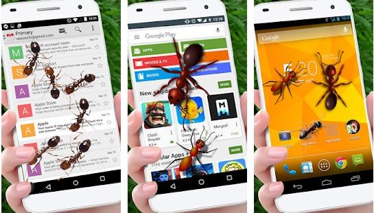 aplikasi semut di layar hp
