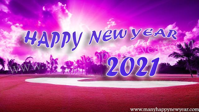 New Year 2021 status