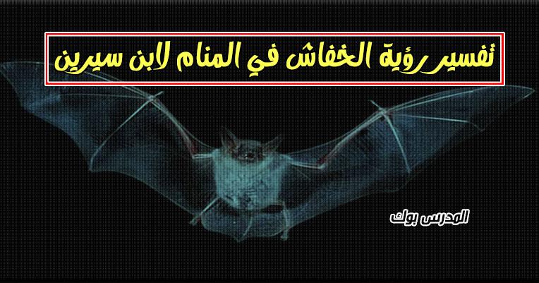 تفسير الخفاش في المنام للعزباء والحامل والمتزوجة تعرف تفسير هجوم الخفاش في المنام لابن سيرين