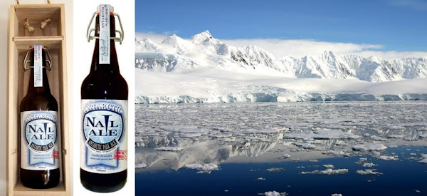 เบียร์ที่แพงที่สุดในโลก Antarctic Nail Ale (3.63 เหรียญต่อมล.)