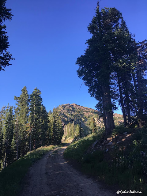 Hike to Clayton Peak via Brighton Ski Resort